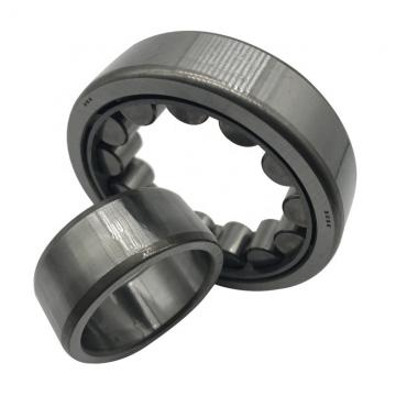 LINK BELT DSB22439E18  Take Up Unit Bearings